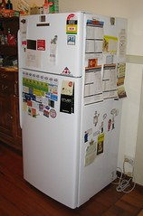 The new fridge