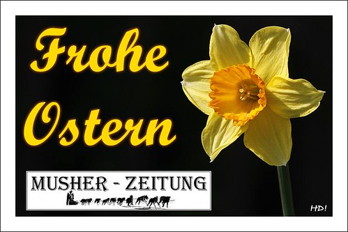 Frohe-Ostern_MZ