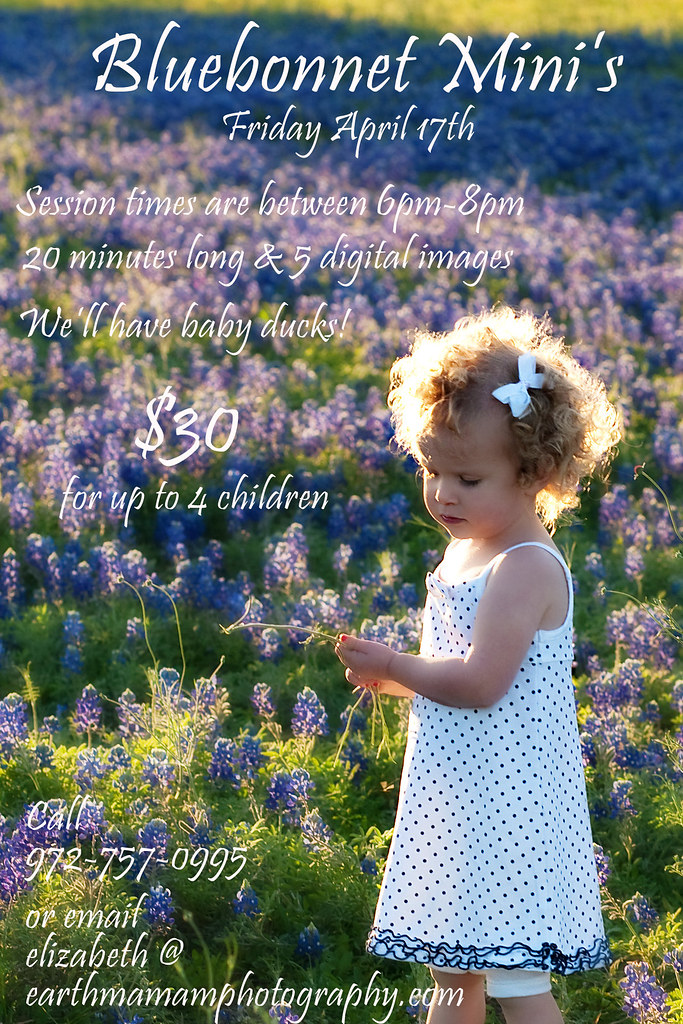 bluebonnet_mini_ad_09