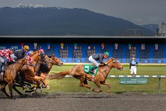 #5 (Eyesplash - the new slow way) Tags: horses horse gambling money mountains racetrack race searchthebest jockeys winner horseracing betting soe thoroughbred galope guesswherevancouver blueribbonwinner hastingsracetrack giessed platinumphoto anawesomeshot impressedbeauty pointedjs saariysqualitypictures miasbest daarklands