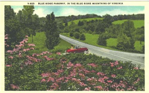 Parkway Postcard 1