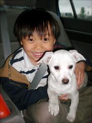 Ichigo Chan (chanchan222) Tags: ichigochan chanclan danchan danielchan domochan chanchan222 ethanandrewchan wwwchanofamericacom chanwaibun
