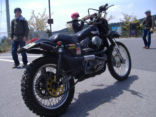 Off-road Sportster 01