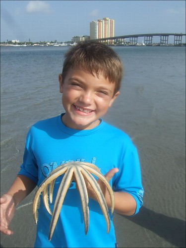 George found a nine-armed starfish!