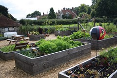 Raised Beds (keepinsidethelines) Tags: hampshire raisedbeds beaulieulearninggarden