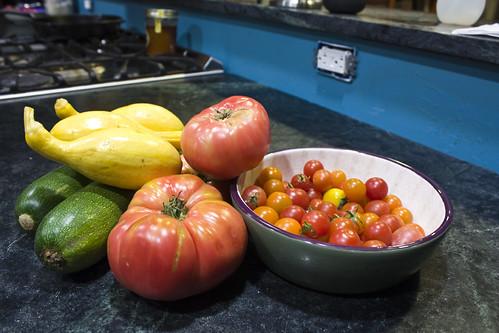 Squash Tomatoes