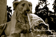 Piazza Del Popolo (ryanbogosta) Tags: people italy rome roma water fountain del italia lion young angels sit piazza popolo demons