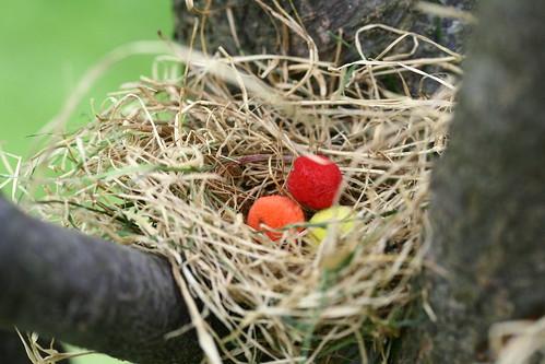 Fuzzy nest