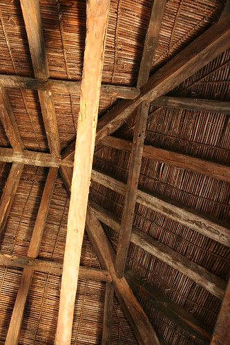grass ceiling