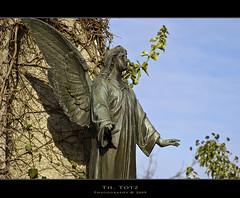 Angel (def110) Tags: friedhof cemetery angel germany freiburg lightroom d80 nikond80