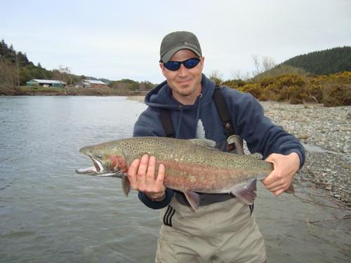 Elk River Steelhead