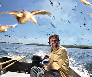 Zizek in The Birds by you.
