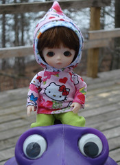 Frog Eyes (weemedesigns) Tags: dolls kitty bjd bluefairy pocketfairy celie