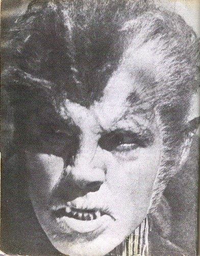 wolfman28