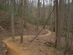 22 - flying squirrel trail