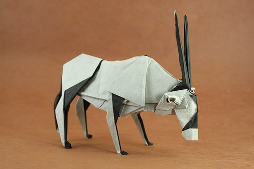 128 Best Origami / paper folding images | Origami paper, Origami ... | 333x499