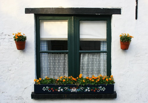 Flowers In The Window por just.Luc.