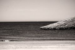 tiny wave, big parasol & a few seagulls (ion-bogdan dumitrescu) Tags: sea summer sun seagulls white black beach water umbrella seaside big waves seagull small wave parasol romania blacksea neptun olimp bitzi mareaneagra semisepia ibdp mareaneagr may1st2008 img1259mod findgetty ibdpro wwwibdpro ionbogdandumitrescuphotography