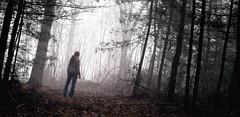 Journey (treehugger*) Tags: trees mist selfportrait me nature misty fog forest photoshop outdoors stand spring woods foggy olympus sp journey crop april 2009 treehugger edit stance kait selfie evolt postprocessing e520