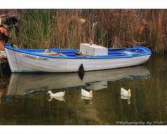 Do you like ducks? (tolis*) Tags: blue sea canon river island boat ducks greece serenity bonnie chios 50d eos50d lagada 24105f4 tolis   flioukas