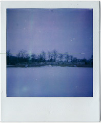 (MilkyAir) Tags: winter cold polaroid purple polska 600 milkyair