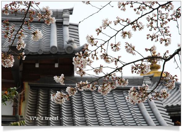 【京都春櫻旅】京都旅遊景點必訪~京都清水寺之美京都清水寺14