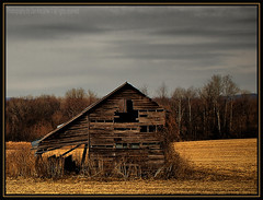 Bound and Determined (Dan Krecklow) Tags: wisconsin barn rural shed tumbledown ramshackle dilapidated bucolic rundown blueribbonwinner buffalocounty photographybydankrecklow atomicaward daarklands