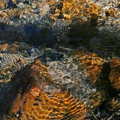 Sanctuary (Beefus) Tags: california water creek leaf refraction ripples flowing easternsierras naturescenes