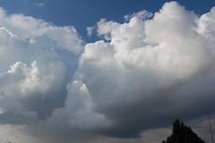 April 18, 2009 - 1st TBoomer 2009 SCN! (NebraskaSC Photography) Tags: sky cloud storm nature weather clouds landscape photography nebraska day cloudscape stormcloud darkclouds darksky wx darkskies stormscape awesomenature southcentralnebraska stormydays newx weatherphotography daystorm weatherphotos skytheme weatherphoto stormpics cloudsday skychasers dalekaminski nebraskasc cloudsofstorms