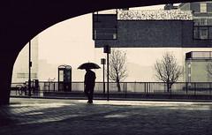 From within... (Che-burashka) Tags: street trees urban man london monochrome rain silhouette umbrella walking 50mm loneliness pavement under gettys phonebox edgwareroad trafficbridge 400d urbanlyric mondocafeclub gettyskn