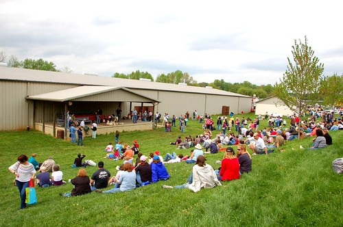 Sheep Shearing draws a crowd
