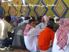 5 (sinabeet) Tags: bedouins sinai