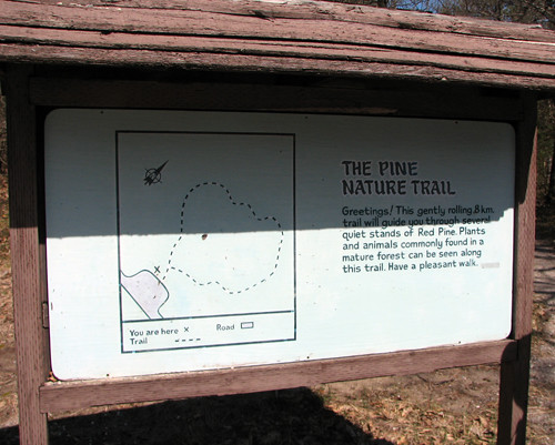 The Pine Nature Trail