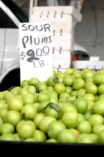 Sour plums at the Hollywood Farmers' Market
