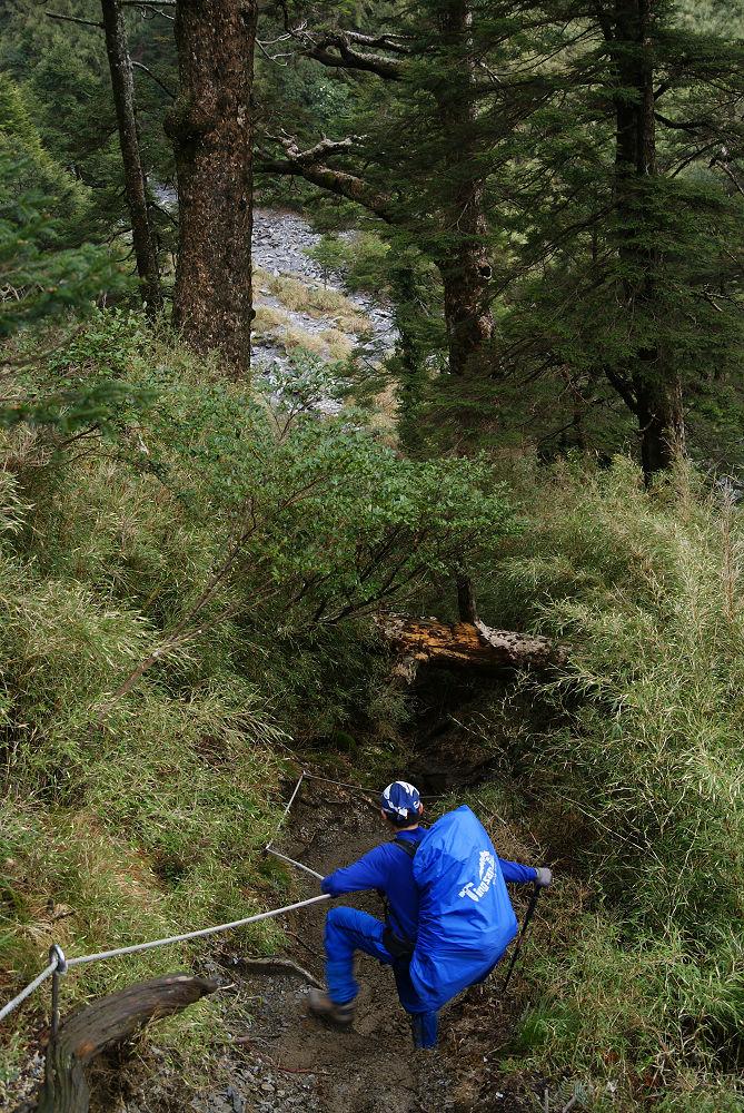 奇萊Day1-65 陡下溪畔