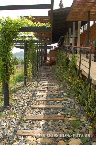 hua hin hills winery pebble walkway
