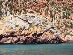 Berlenga Island (SydneyLens) Tags: portugal óbidos peniche berlenga