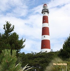 The Lighthouse at Ameland (The Family Dog) Tags: sky lighthouse island woods stripes ameland abigfave theunforgettablepictures