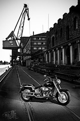 Harley Davidson Fatboy (t0m_ka) Tags: sky bw water bike canon germany eos harbor blackwhite cool chopper wasser harbour cr