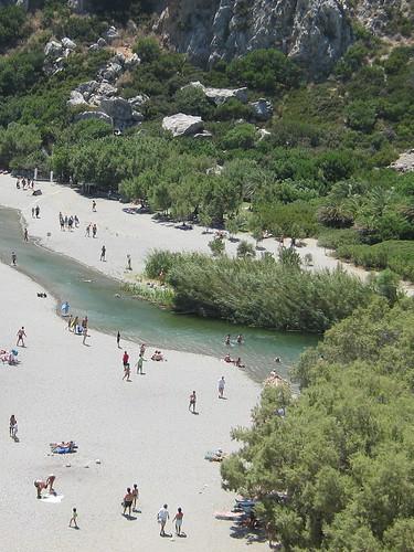 Κοίτη του ποταμού με το φοινικόδασος
