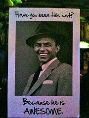 Have You Seen This Cat? (jasonEscapist) Tags: cat poster frank awesome meme sinatra viral catsmithing