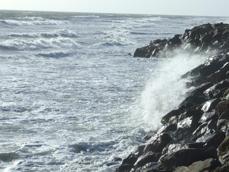 wave surf 05