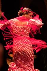 Flamenco (ecodallaluna) Tags: españa sevilla spain flamenco spagna museodelbaileflamenco seviglia
