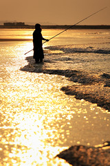 a golden catch (solidskorpion) Tags: sunset sea beach silhouette harbor fishing sand taiwan  beachfishing  taoyuan 70200mm  jhuwei aplusphoto