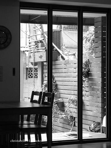 貓薄荷店內黑白(窗)