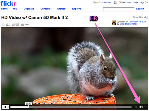 flickr video HD