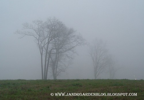Double Mist