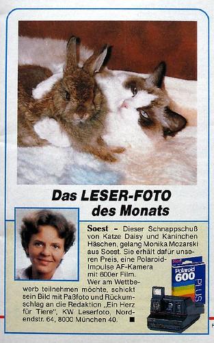 _jpg-leserfoto-Daisy-und-Ka