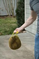 durian mace