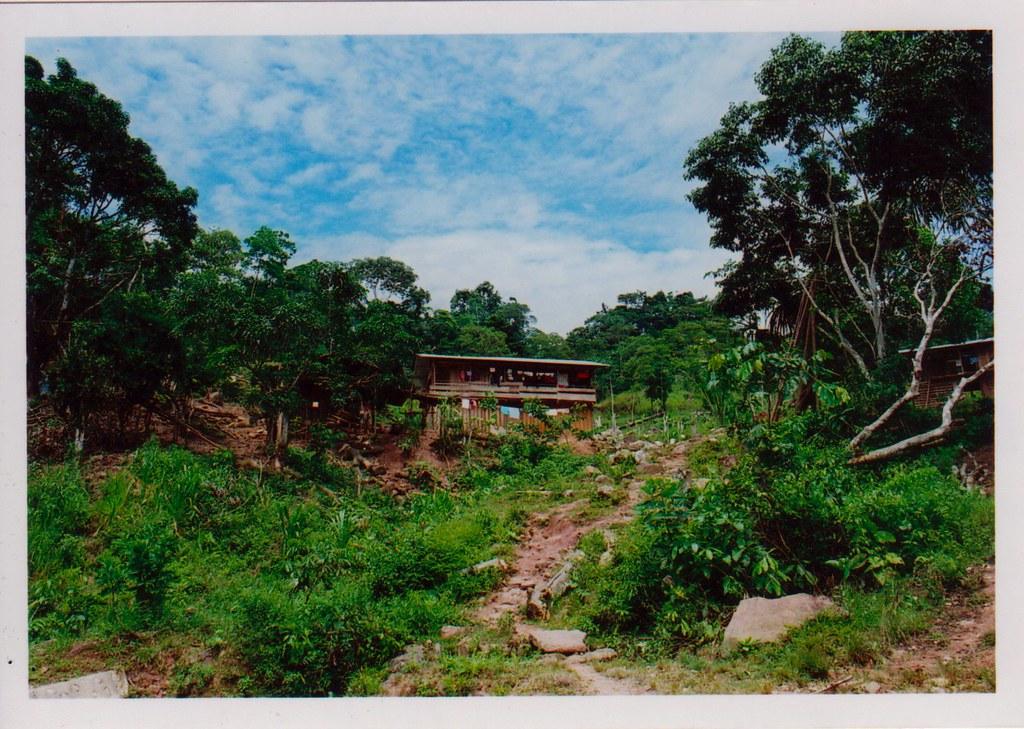 selva yurimaguas-tarapoto